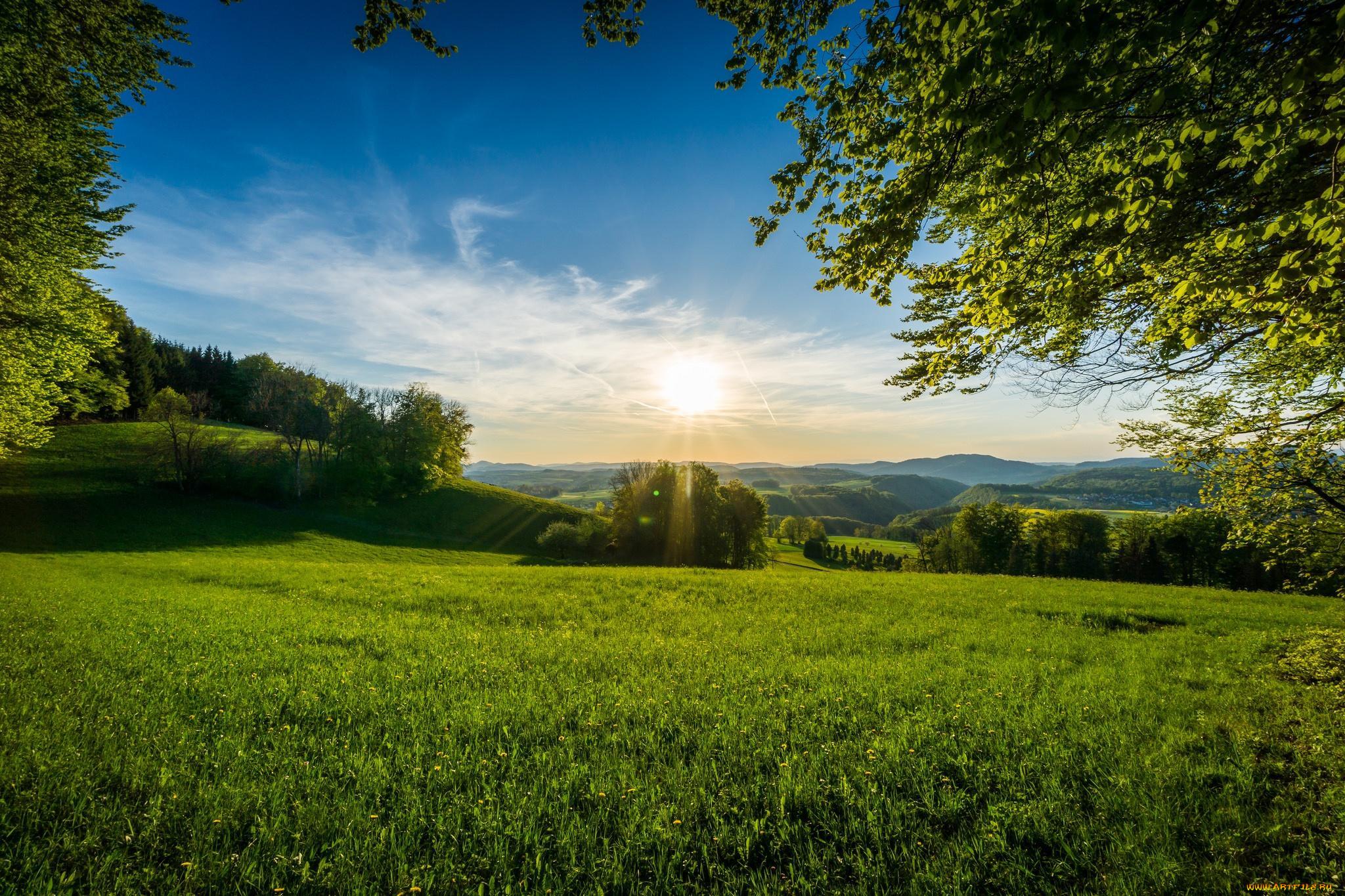 картинка утро трава природа второй день